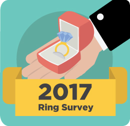 2017 survey icon