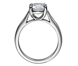BN Trellis Solitaire Engagement Ring - Solitaire engagement rings